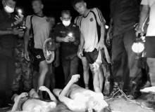 नुहाउने क्रममा बेपत्ता भएका कैलालीका दुई बालक मृत फेला
